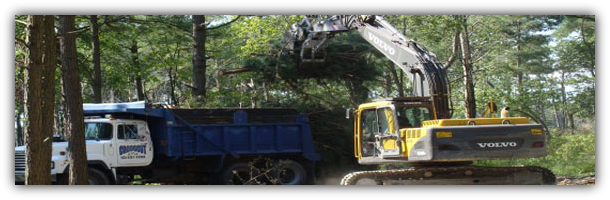 Florida Land Clearing Company